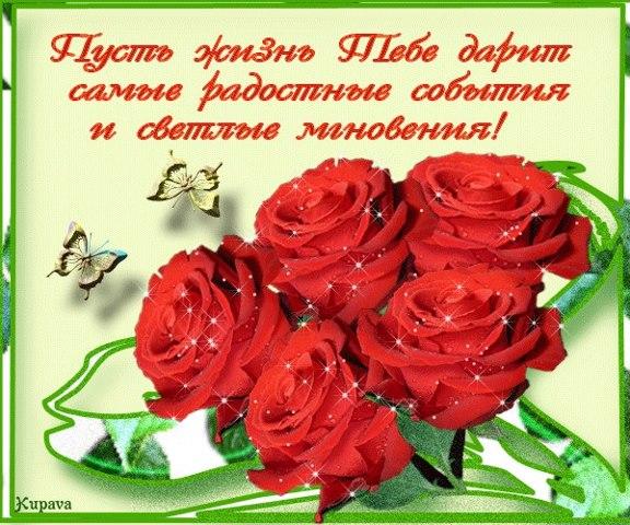 13427_533261410045428_2109508463_n